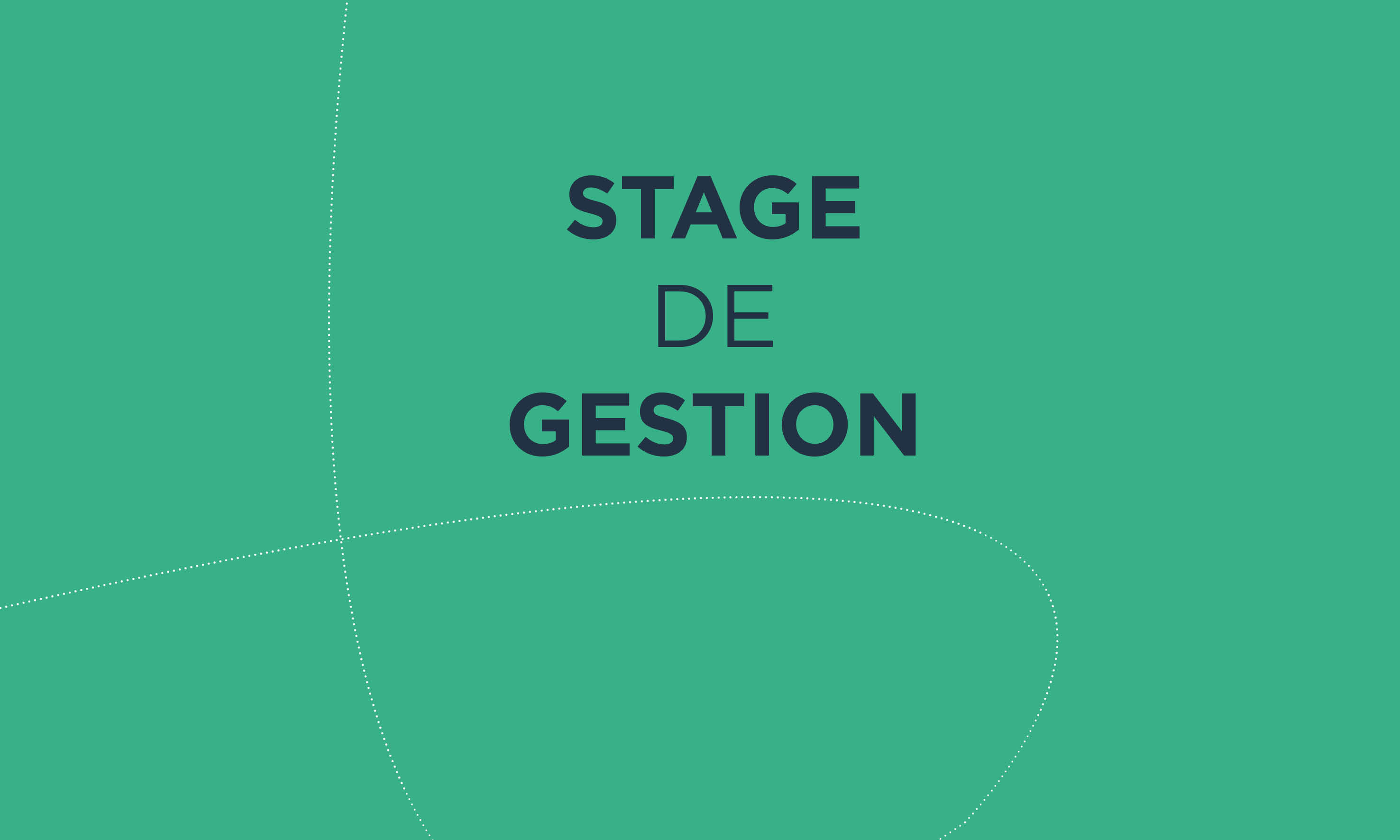 STAGE GESTION